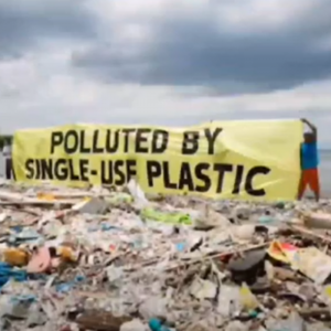 Spune NU poluării! Spune NU plasticului!